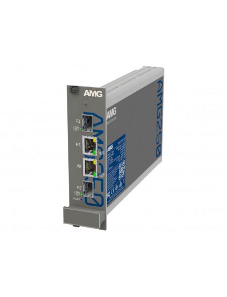 AMG250R Медиаконвертеры 100/1000М с креплением в стойку