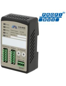 G0306/G0307 Преобразователь Modbus в PROFIBUS DP/PA