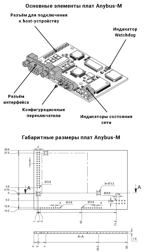 Габаритные размеры и основные элементы плат Anybus-M